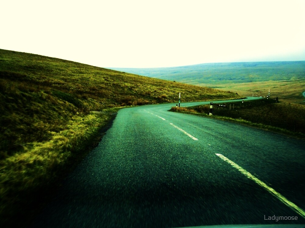 Straight  Lines by Ladymoose