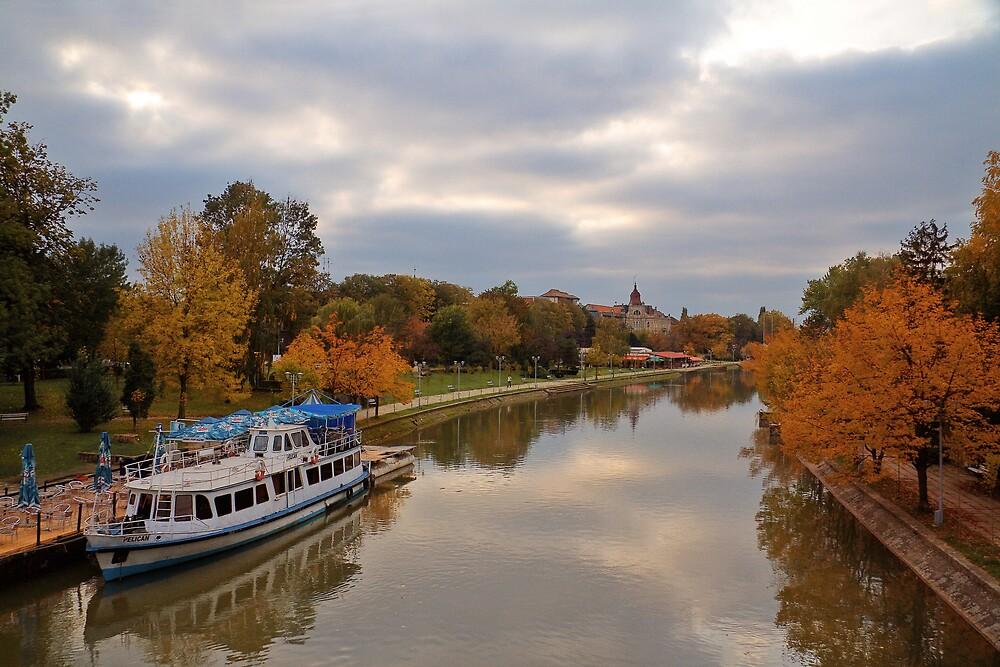 Autumn in Timisoara by GabiB