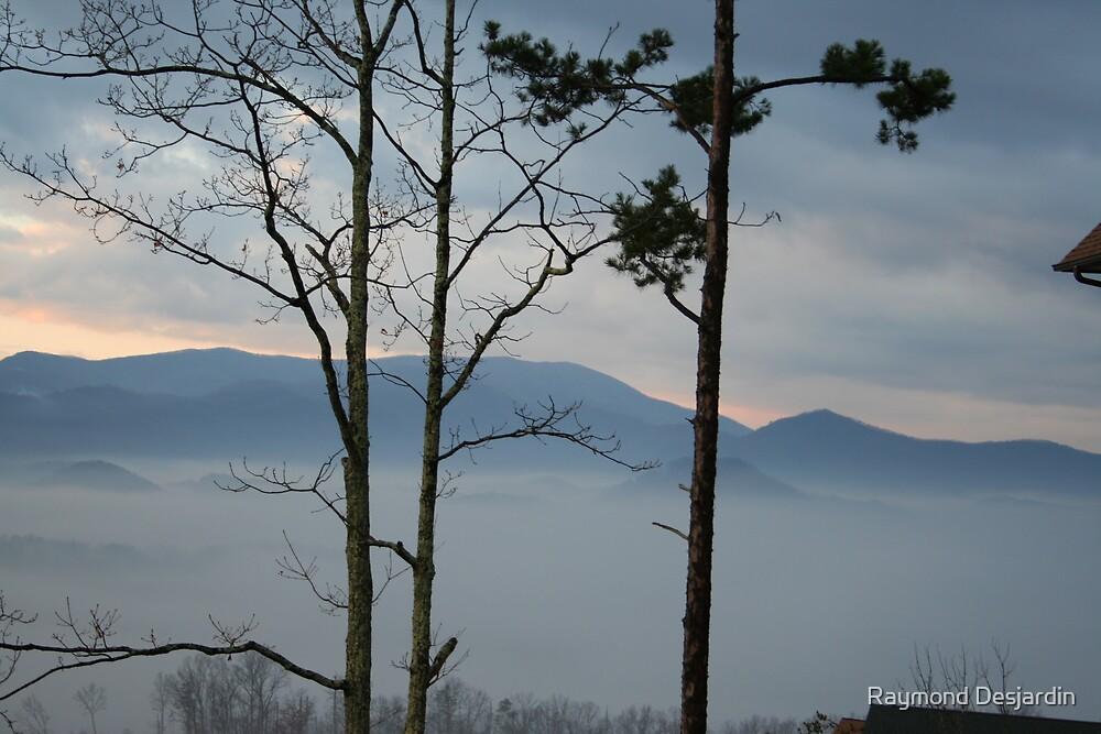 Smoky Mountains 3 by Raymond Desjardin