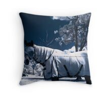 Snow Pony Throw Pillow
