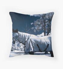 Snow Pony Throw Pillow