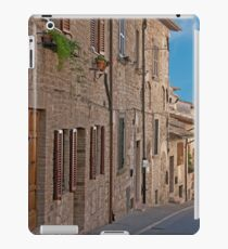 Quiet Incline iPad Case/Skin