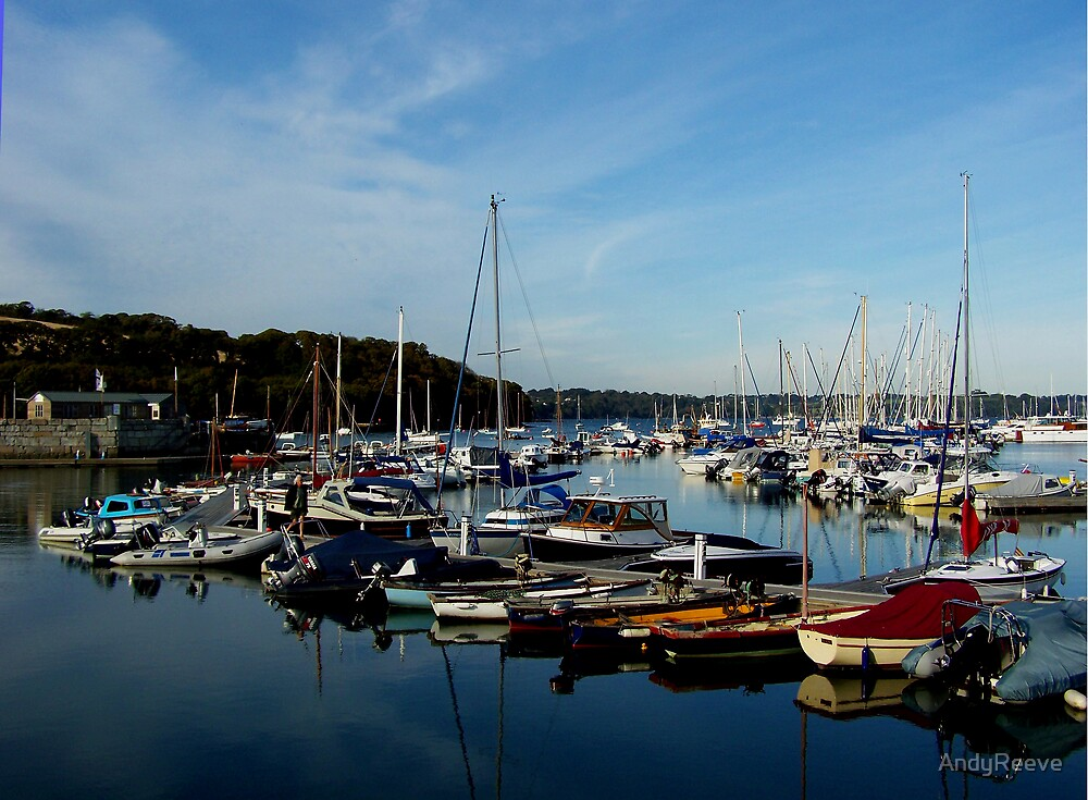 Mylor marina #1 by AndyReeve