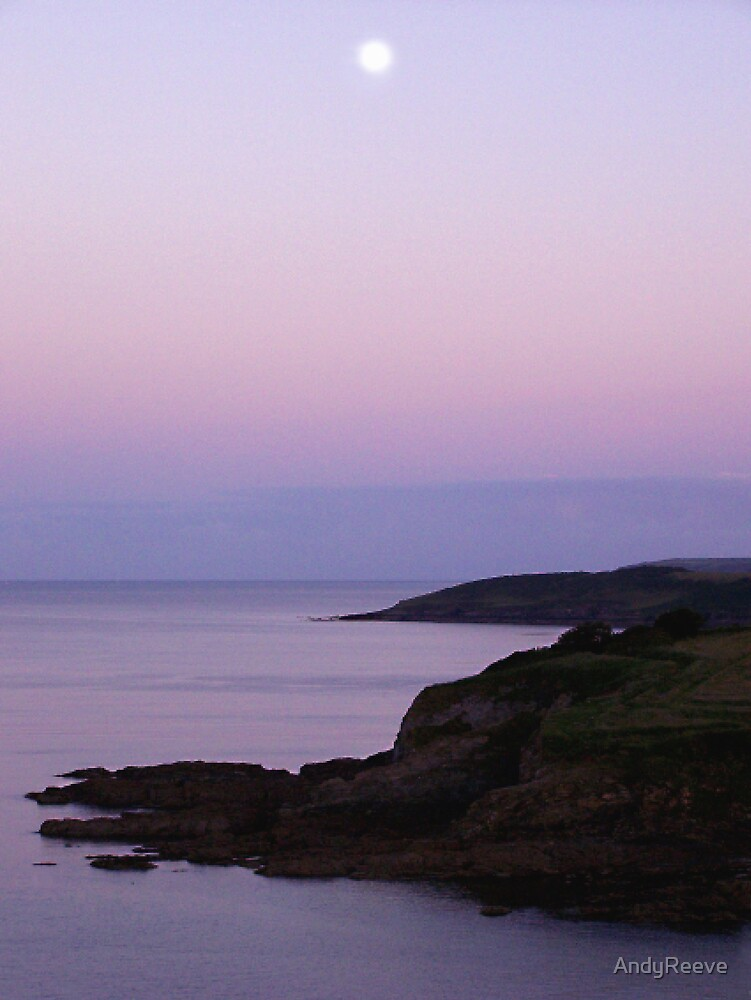 Maenporth Moonrise by AndyReeve