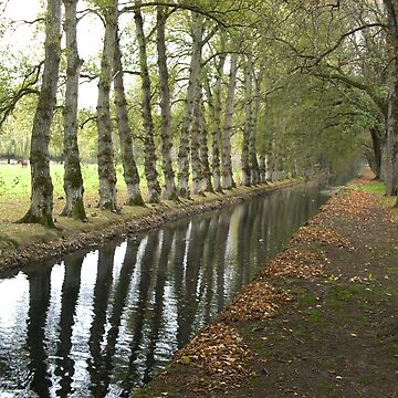 Autumn Reflection by Joanna16