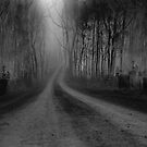 The Road Ahead by rossco