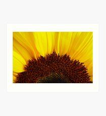 Shinning Sun Art Print