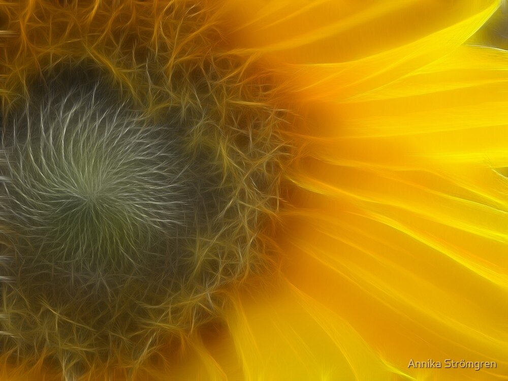 Fractal sunflower by Annika Strömgren
