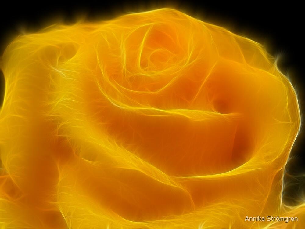 Fractal rose by Annika Strömgren