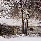 Cold Winter Ahead by Debra Fedchin