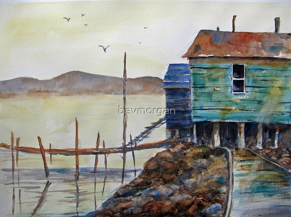 """A Scene from """"the Rock"""" (Newfoundland) by bevmorgan"""