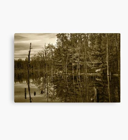 Pond Reflections Canvas Print