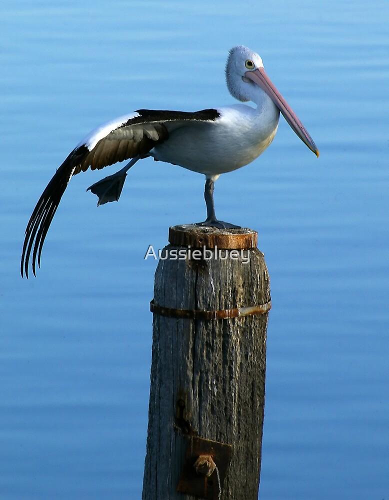Pelican Ballett. by Aussiebluey