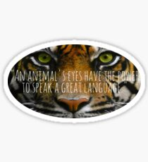 Tiger Eyes Sticker