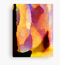 Color Field II Canvas Print