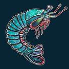 Mantis Shrimp von n1mh