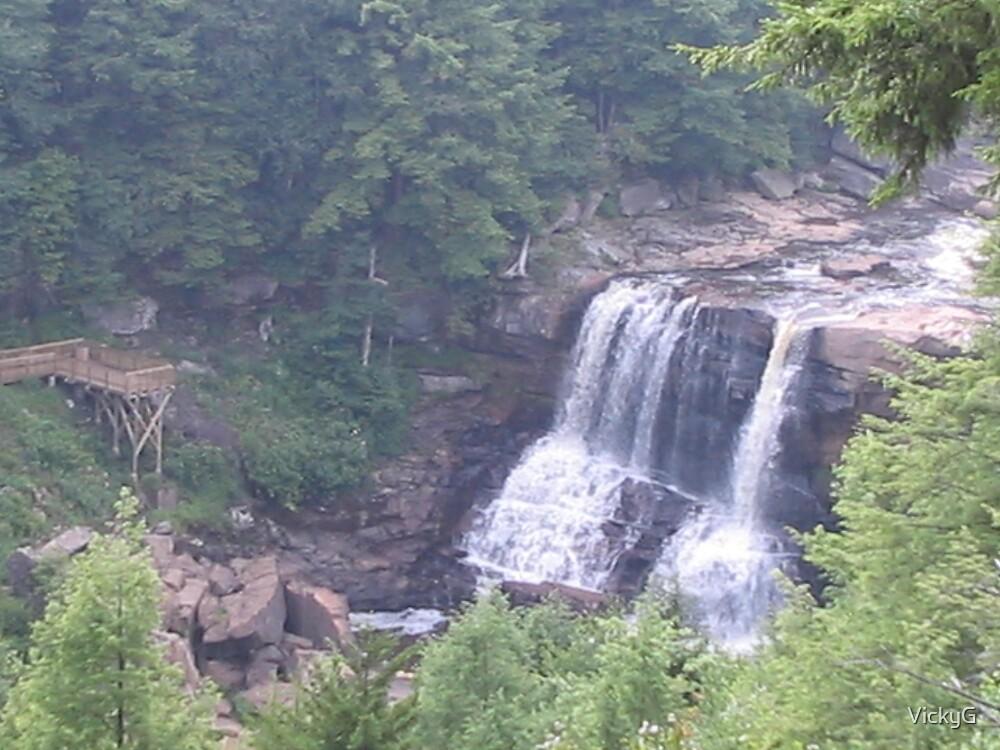 Blackwater Falls Handicap Overlook by VickyG