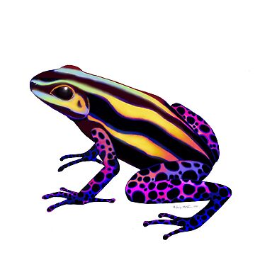 Poison Arrow Frog by twopurringcats