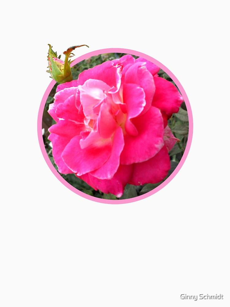 Rose T by CricketNoel