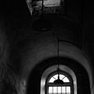 I see the Light by Debra Fedchin