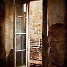 A Window to the Outside? by Debra Fedchin