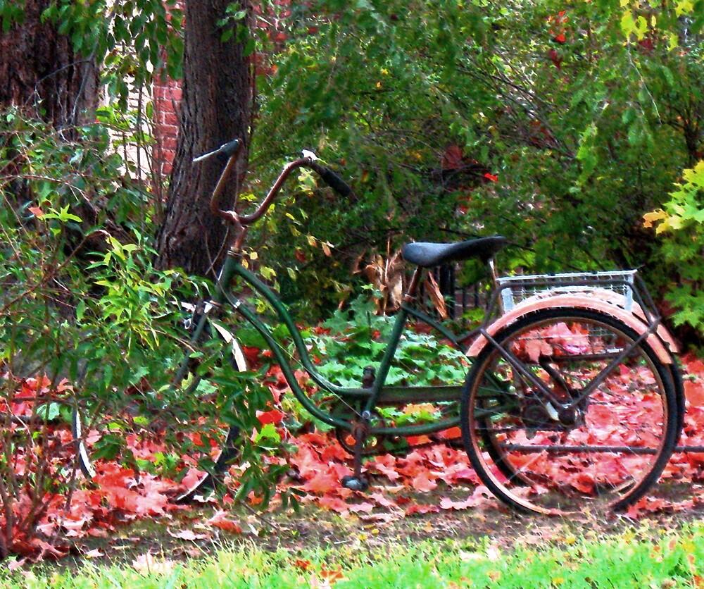 Old-Fashioned Wheels by nikspix