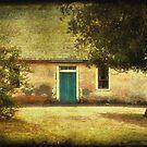 Cottage by Debra Fedchin
