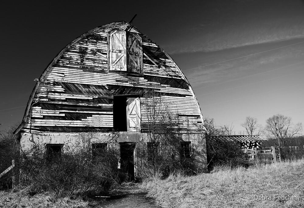 Nursery Barn that has seen better days  by Debra Fedchin