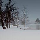A Snow Day # 1 by Debra Fedchin