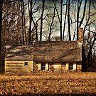 The Cottage by Debra Fedchin