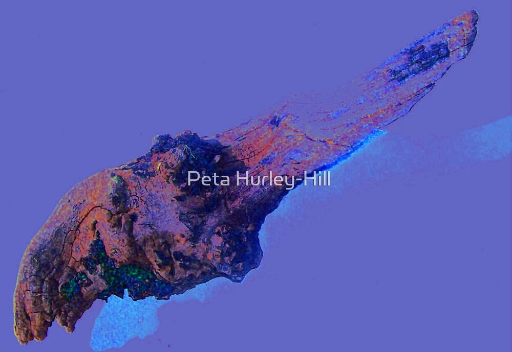 log by Peta Hurley-Hill
