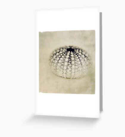 seacreature Greeting Card