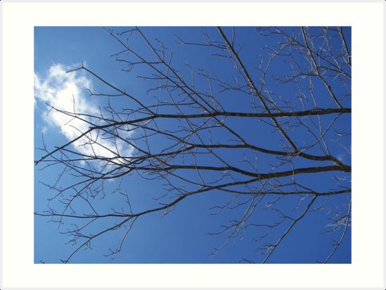 slice of sky by budrfli