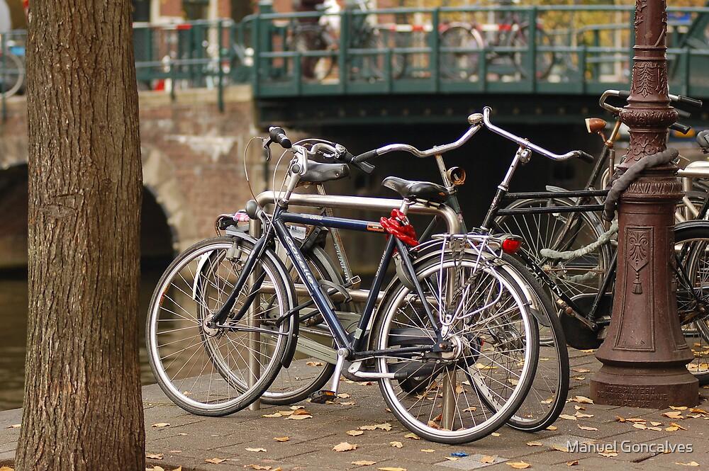 Bikes by Manuel Gonçalves