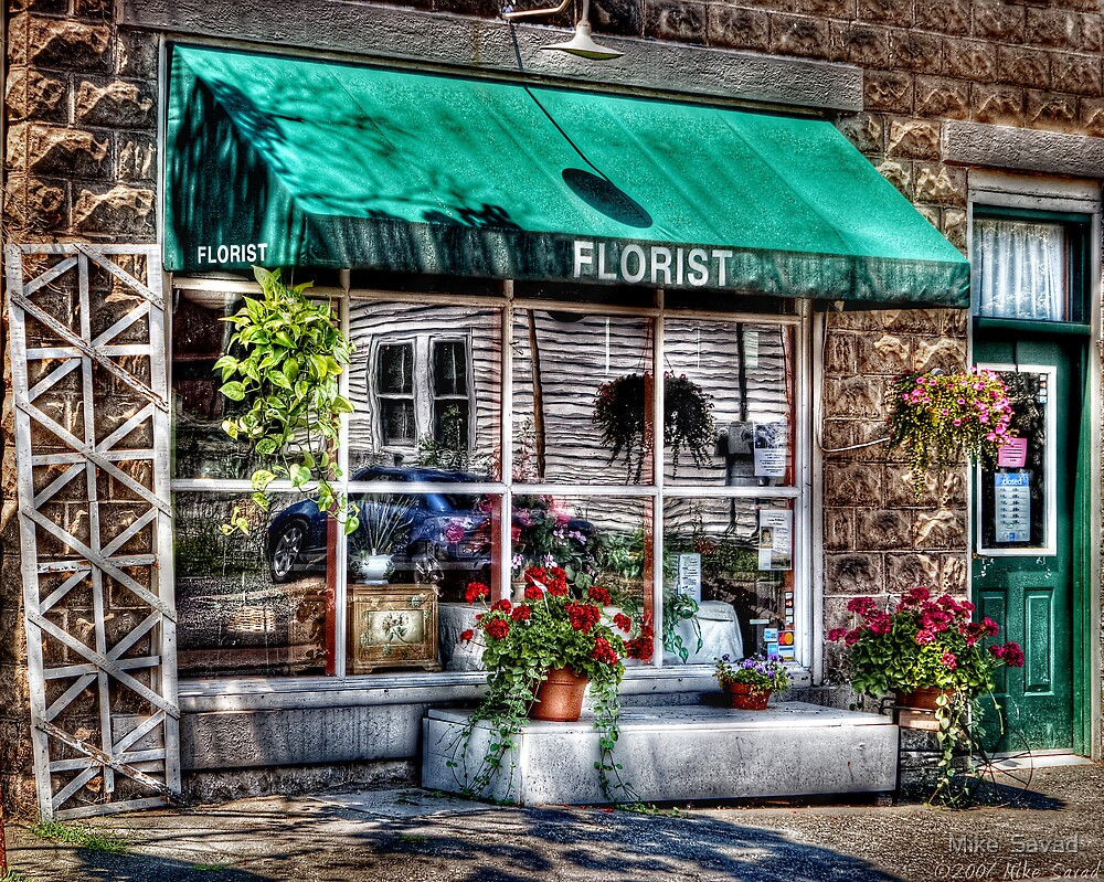 The Florist Shop by Michael Savad