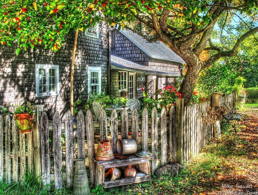 A Gardeners yard by Michael Savad