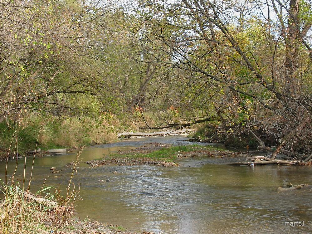 Oshawa Creek by marts1