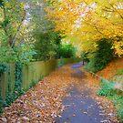 Leafy Walkway by bobkeers