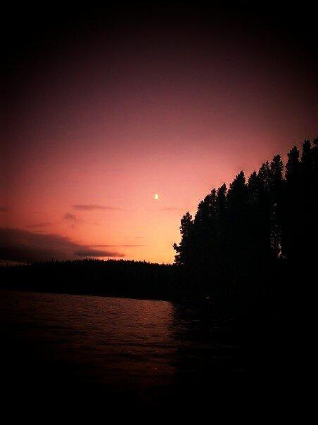 Moon Set by Natania Rogers