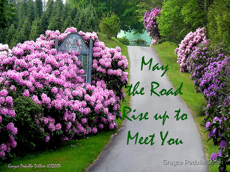 May the Road Rise to Meet You by Grayce Pedulla-Dillon