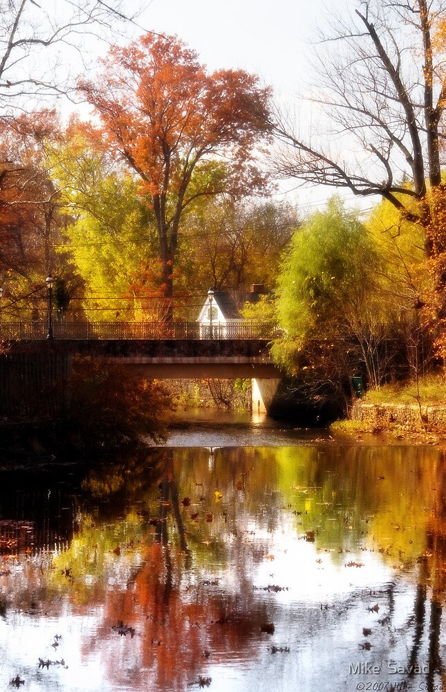 One fall day by Michael Savad