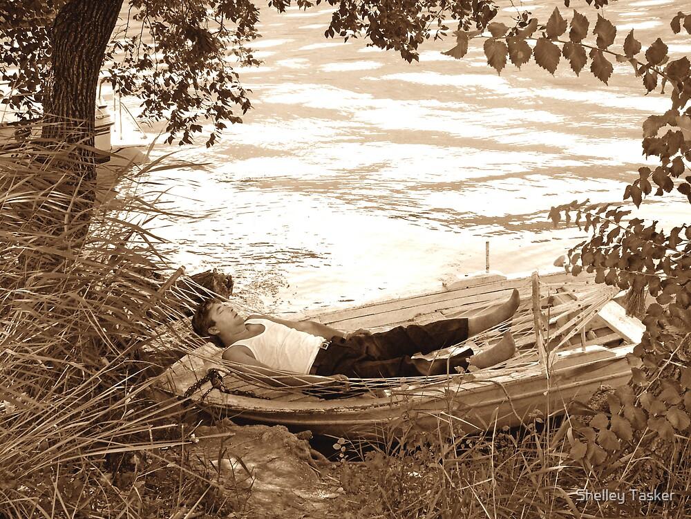 Dream .... by Shelley Tasker