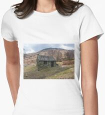 Ashness Bridge Shelter Womens Fitted T-Shirt