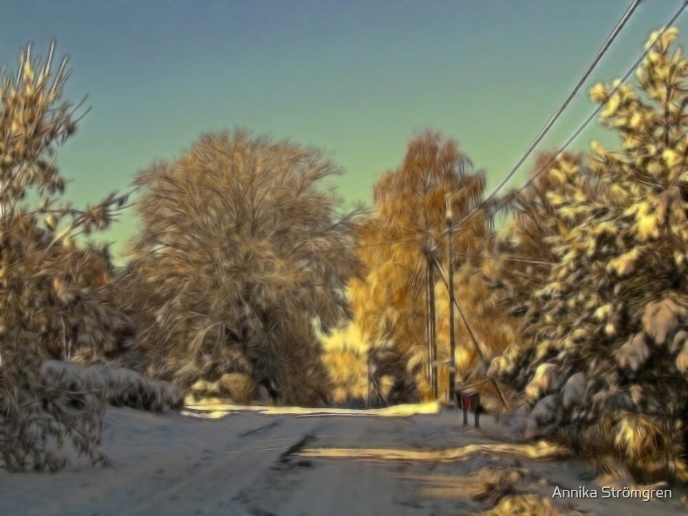 Winter by Annika Strömgren