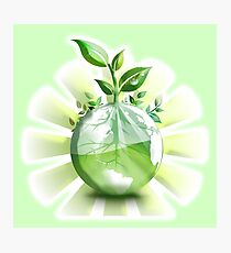 Ecology, Earth science, Environment, Eco, Ecosystems, Green Photographic Print