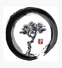 Japanese Pine Tree in Enso Zen Circle - Vintage Japanese Ink Photographic Print