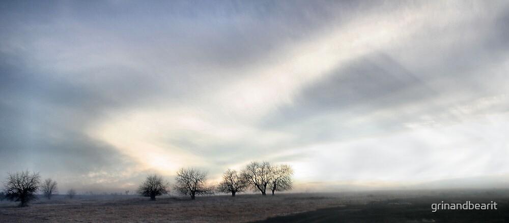 Cloudy Haze by grinandbearit