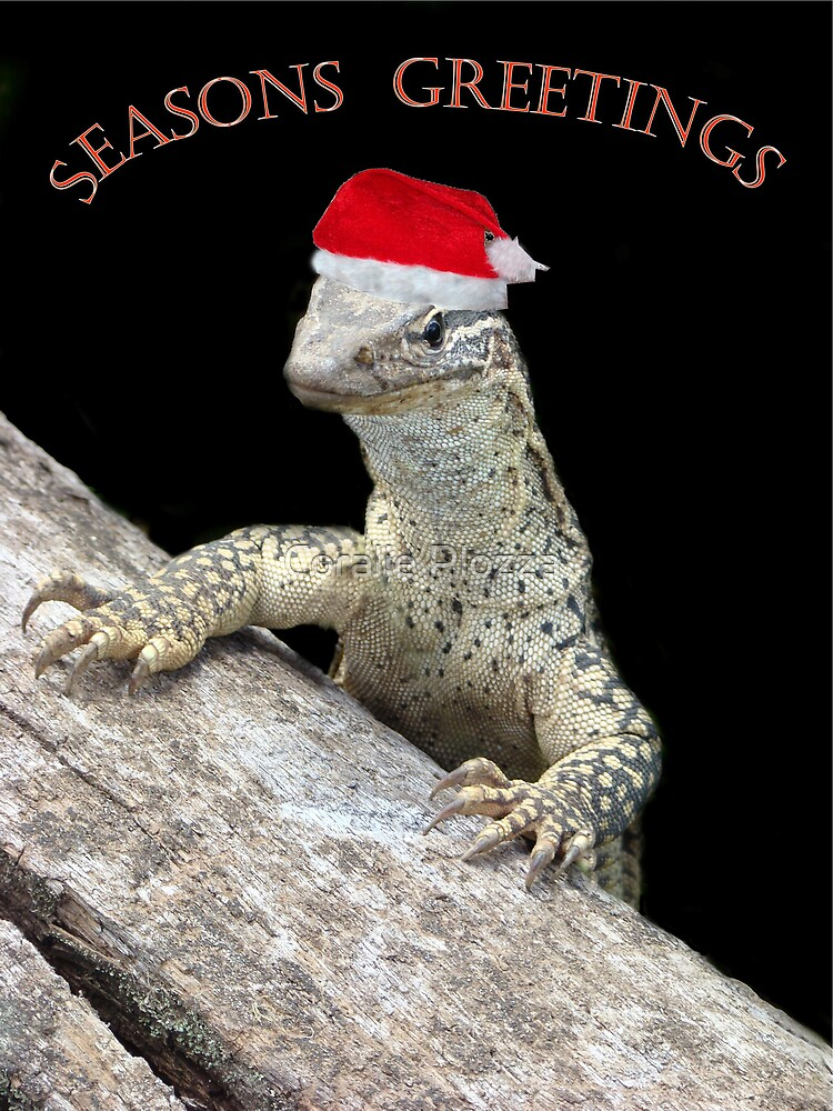 A Scaley Christmas Greeting by Coralie Plozza