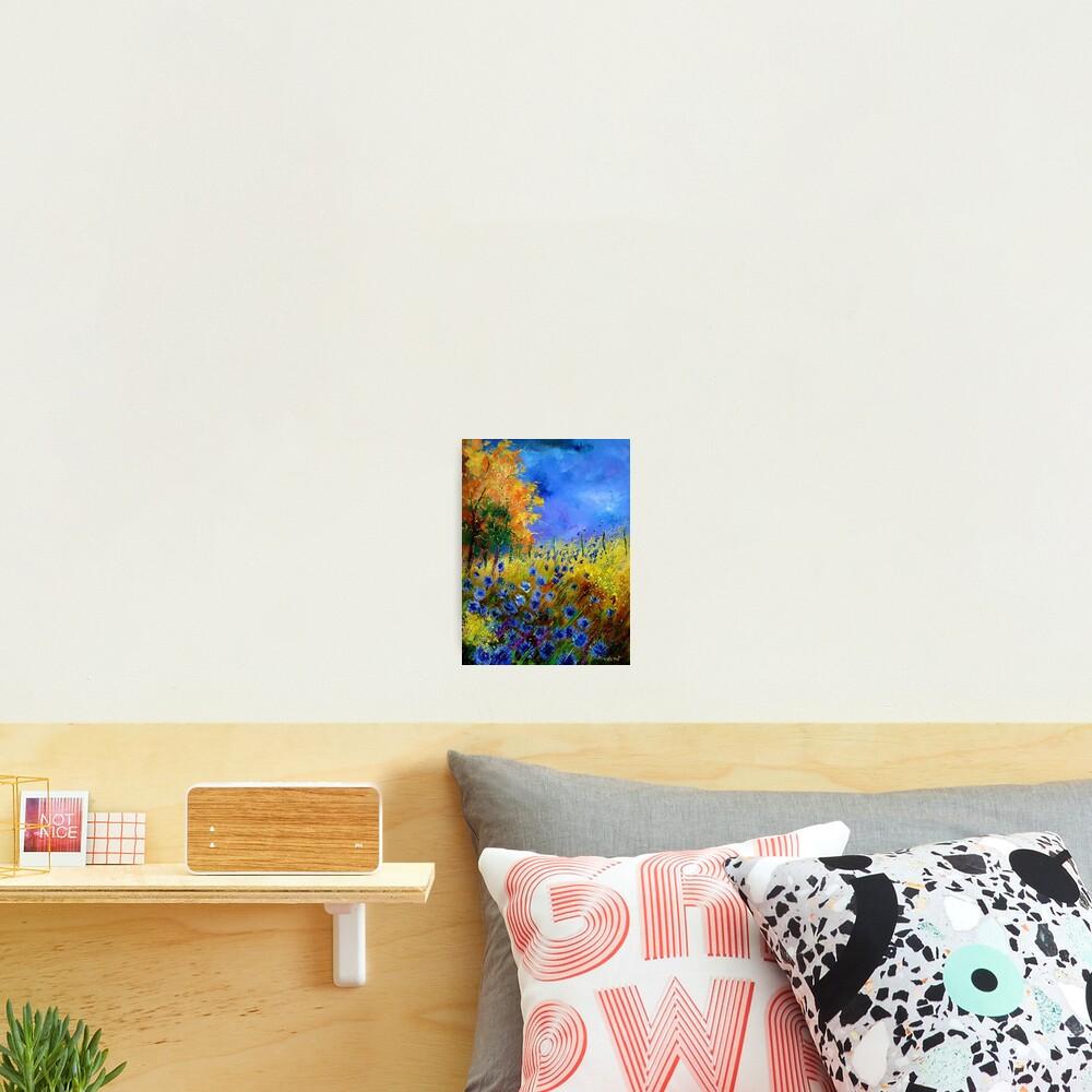 Blue cornflowers and orangetree Photographic Print