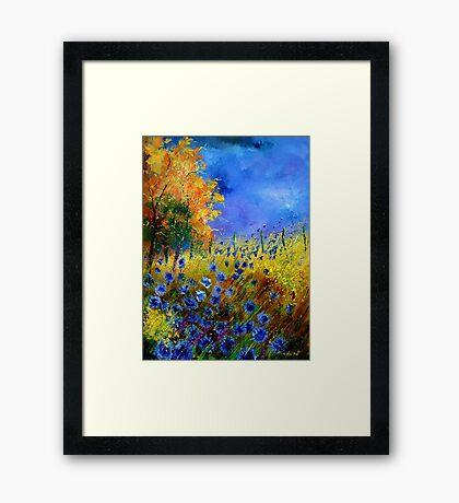 Blue cornflowers and orangetree Framed Print